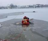 Pod mężczyzną załamał się lód! Strażacy ruszyli z pomocą [ZDJĘCIA]