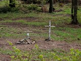 Po stu latach powstanie żołnierski cmentarz na zboczach Manyłowej w Bieszczadach. Odnaleziono tam szczątki poległych [ZDJĘCIA]