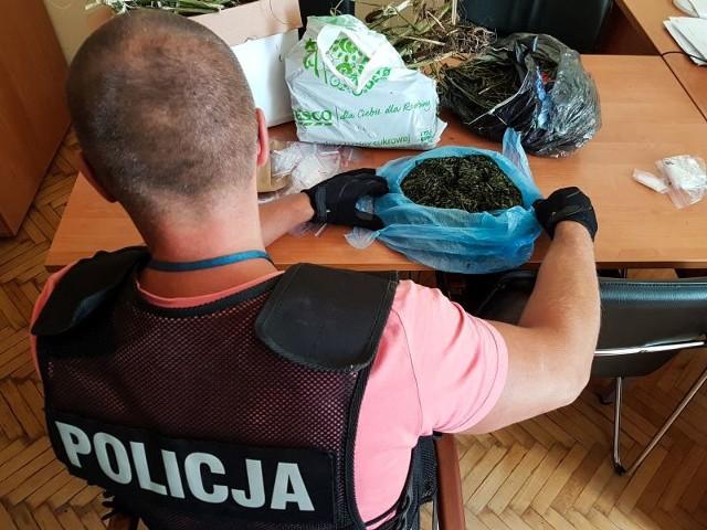 W torbie było pół kilograma konopi indyjskich
