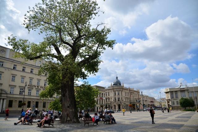 Przebudowany ma być cały plac Litewski w Lublinie. W jego centralnym miejscu stanie nowa multimedialna fontanna