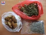 19-latek z Ludwina miał w ciasteczkach specjalny składnik. Zainteresowała się nim policja