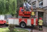 Drzewo pochyliło się nad szpitalem Pirogowa. Mogło wybić szyby w oknach! ZDJĘCIA