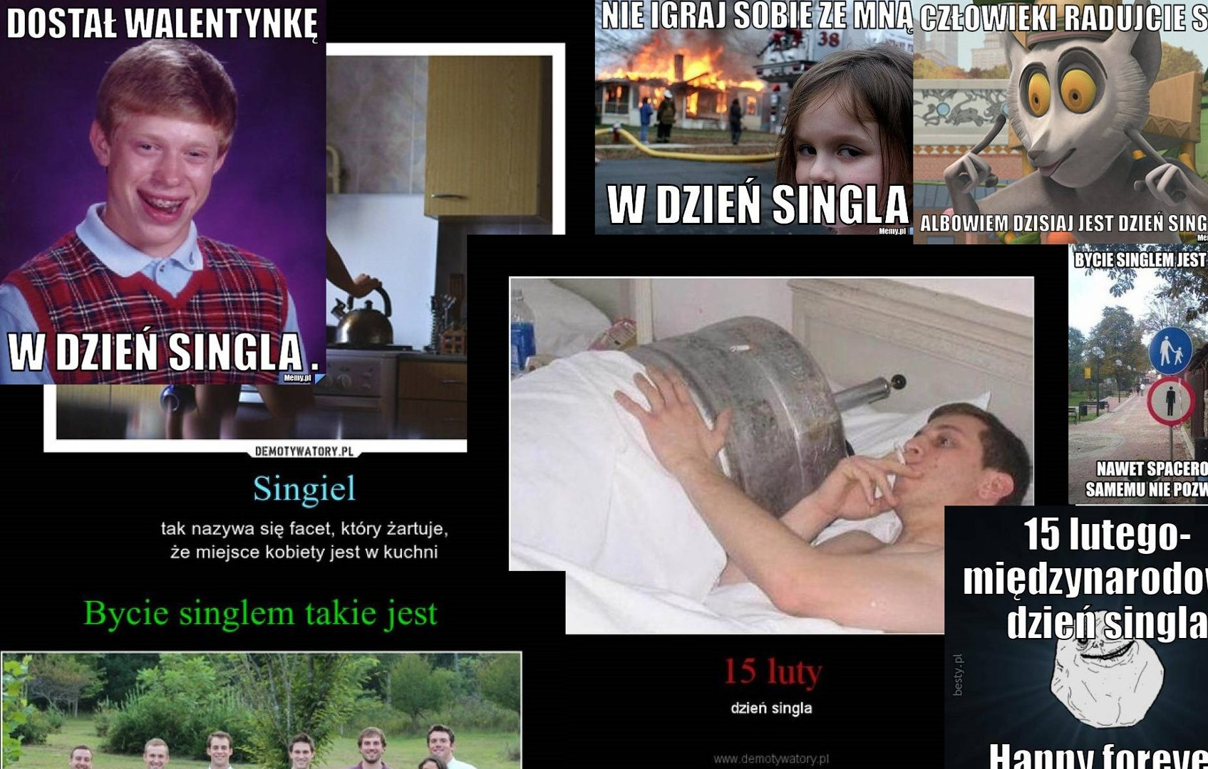 Memy Na Dzień Singla 2019 Zobacz Najlepsze Memy śmieszne Obrazki I