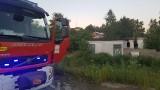 Pożar na Wilgotnej w Łodzi. Podpalenie opuszczonych budynków pofabrycznych na osiedlu Andrzejów [ZDJĘCIA]