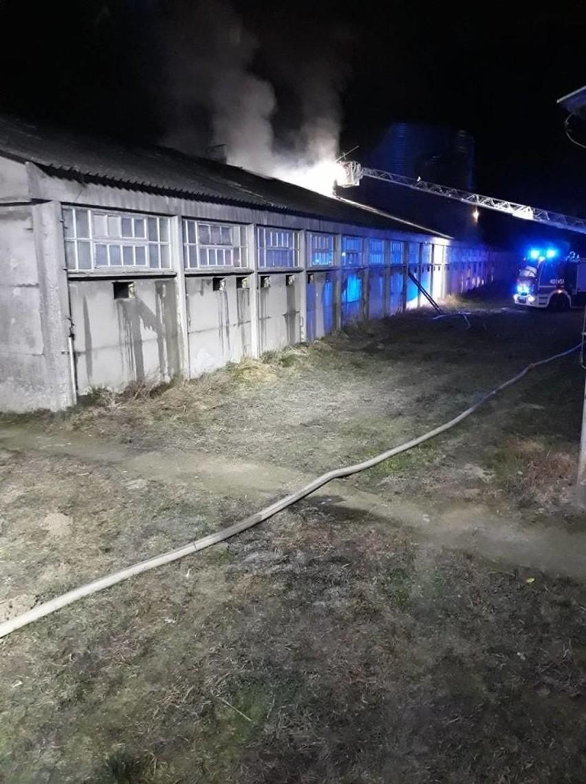 Do akcji gaśniczej skierowano 16 zastępów straży z powiatu...