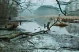 Noteć, Brda, Wisła. Zobacz najpiękniejsze zdjęcia polskich rzek wykonane zimą przez mieszkańca Pomorza i Kujaw [zdjęcia]