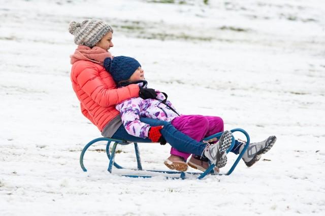 Dawno we Wrocławiu nie było tyle śniegu. A jak jest śnieg, to trzeba iść na sanki! Do wyboru: drewniane, plastikowe, z oparciem lub kierownicą, jabłuszka, maty do zjeżdżania i ślizgacze. Zobaczcie, co mają w ofercie dyskonty, markety i sklepy sportowe we Wrocławiu na kolejnych slajdach.