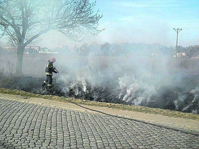 Strażacy ostrzegają, że dym przy drodze może doprowadzić do wypadku komunikacyjnego. W ogniu giną owady, ptaki i małe zwierzęta.