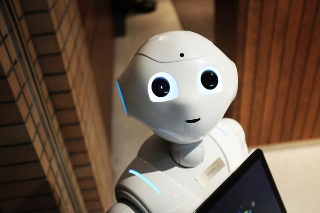 Już w 2016 r. w amerykańskim Los Angeles można było zamieszkać w apartamentowcu, gdzie pokoje obsługuje robot. Takie atrakcje można spotkać do dziś – przypominający metalowy słupek na kołach robot m.in. dostarcza pod drzwi zamówione przez smartfona produkty.Co więcej, jest możliwe, że w przyszłości w takiego pomocnika wyposażone będzie każde mieszkanie. Firma Samsung pracuje nad robotem domowym o nazwie Bot Handy, który za pomocą mechanicznego ramienia będzie mógł m.in. pozbierać z podłogi ubrania, wstawić naczynia do zmywarki czy podać filiżankę z kawą.