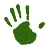 Bio, eko, bez glutenu - jak kłamią, żeby zdobyć nasze pieniądze