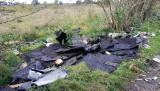 Gdańsk: Wyrzucił śmieci z ciężarówki na polanę. Zarejestrowała go fotopułapka referatu ekologicznego straży miejskiej