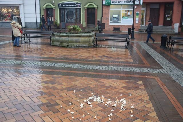 Mieszkańcy, którym nie podoba się taki stan rzeczy mogą złożyć wniosek do Ratusza, aby wprowadzić zakaz karmienia gołębi.