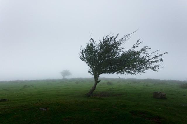 Musimy być przygotowani na opady deszczu oraz burze z gradem w Lubuskiem.