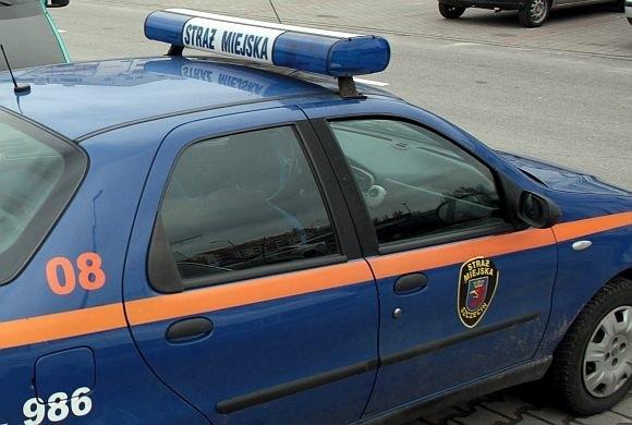 Strażnicy miejscy zatrzymali złodzieja.