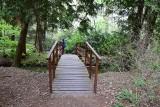 Pomysł na weekend. Park i ogród dendrologiczny w Lipnie. Jak tam dojechać?