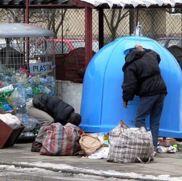 Przy altankach na odpady w Stalowej Woli spotkać można osoby, które wybierają makulaturę i sprzedają papier w punkcie skupu