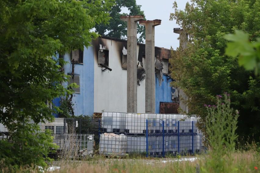 Na terenie dawnego Zachemu spłonęła hala produkcyjna o...