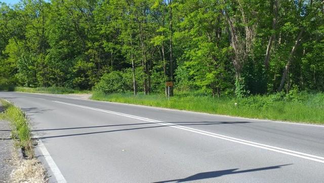 Droga wojewódzka nr 245 ma zostać wyremontowana - już ogłoszono przetarg na wyłonienie wykonawcy dokumentacji