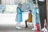 Wzrost zakażeń koronawirusem. Prof. Gut: Mamy do czynienia z mieszaniem populacji