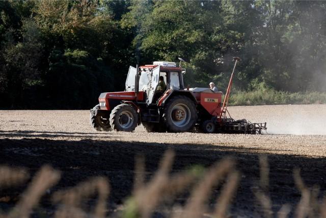 Główny Inspektorat Sanitarny stwierdza, że w przypadku kwarantanny rolnika dopuszczalne jest  prowadzenie na terenie gospodarstwa prac polowych i zajmowanie się inwentarzem, jednak zalecane jest stosowanie maseczki
