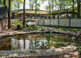 W Ogrodzie Zoologicznym będzie można oglądać niezwykłe zwierzęta