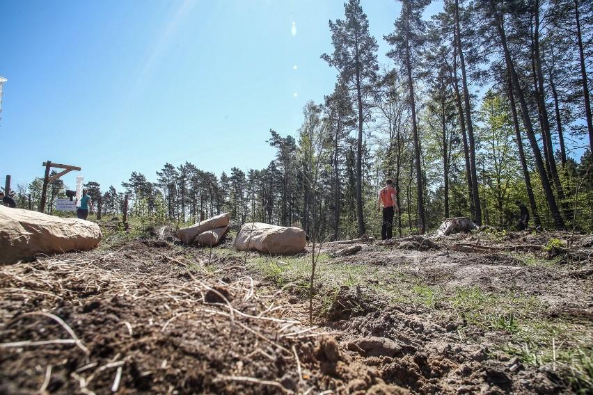 Specjalista służby leśnej wyceniony został na 2,4 do 7,4...