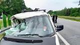 Wypadek na S3 pod Zieloną Górą. W jakim stanie jest poszkodowana 12-latka? Dziewczyna przeszła operację