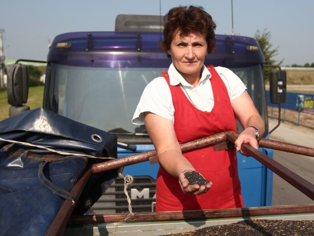 Elżbieta Krupa wraz mężem, żeby sprzedać 15 z 60 ton zakontraktowanego rzepaku, czekała w koleje kilkanaście godzin.