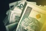 Przestępcy próbowali łącznie wyłudzić ponad 85 mln złotych. To najwyższy poziom od 13 lat