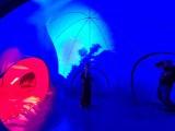 Luminarium stanęło na pl. Rapackiego w Toruniu! Co to takiego? Zobacz zdjęcia! [bilety, godziny otwarcia]