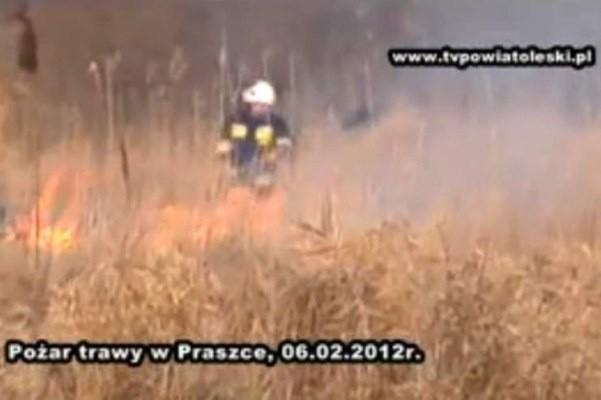Pożar traw w Praszce.