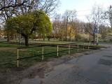 Wrocław: Parkowanie na trawnikach. Słupki na ratunek! (ZOBACZ)