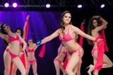 Wybierali Miss Polonia Studentek [ZDJĘCIA]