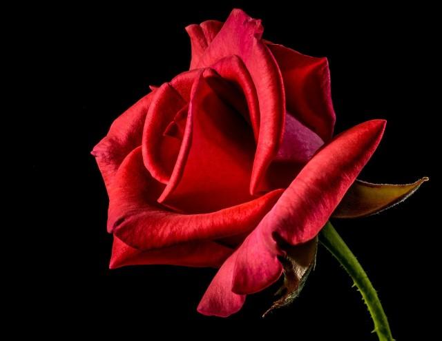 Najlepsze życzenia i wierszyki na Dzień Kobiet. Wierszyki do wysłania z okazji Dnia Kobiet, 8 marca. Zobacz wybrane życzenia z okazji 8 marca. Krótkie życzenia do wysłania sms albo przez messengera.