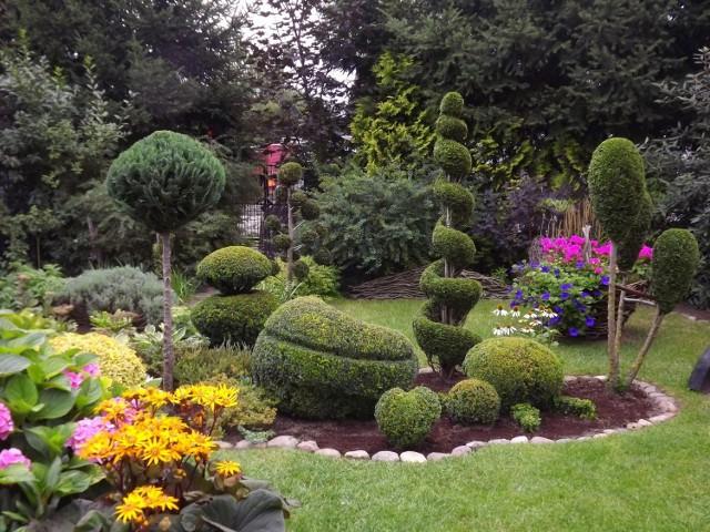 Przydomowy ogród Iwony Kostrzewy w Międzyrzeczu. To jeden z kandydatów w naszym plebiscycie.
