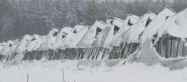 Przy dawnej ul. 27 lipca (dziś 42 Pułku Piechoty) na 6 hektarach przez lata stały szklarnie. W lutym 2010 zawaliły się pod naporem śniegu. Kilka lat później teren kupił deweloper