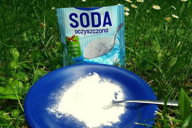 Soda oczyszczona to bardzo wszechstronny środek. Przyda się także w ogrodzie.