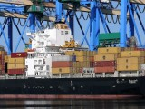 Polska produkuje rocznie 5-6 mln ton nadwyżki zbóż. Producenci chcą budowy portu zbożowego w ramach Krajowego Planu Odbudowy