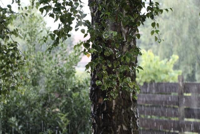 Piątek, 29 lipca w całym regionie będzie burzowy i deszczowy.