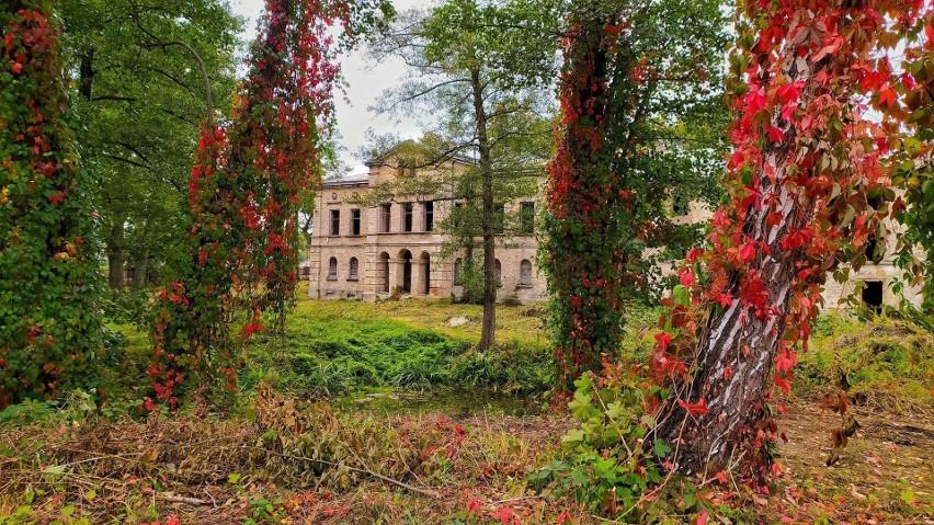Jesień nastała już na całego. Urokliwe okolice Wąchocka...
