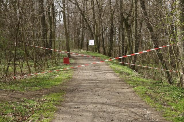 Zakaz wstępu do lasu powinien zostać zniesiony - uważa Rzecznik Praw Obywatelskich.