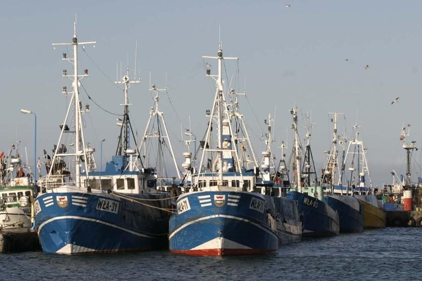 Ryby znikają z zatoki. Powodem niedobór tlenu? Tak twierdzą rybacy i część naukowców