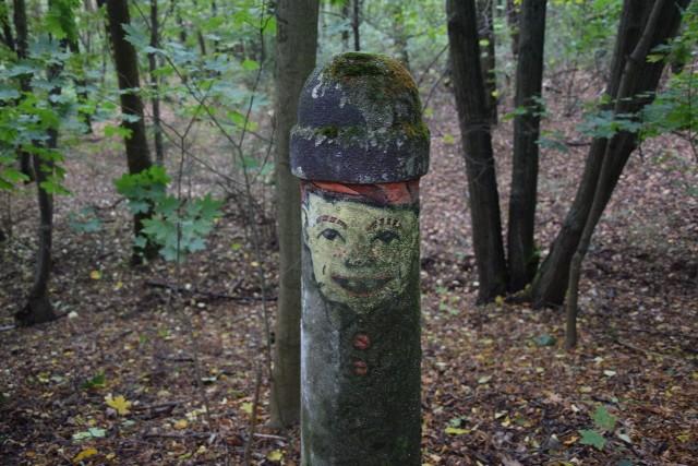 Spacer po Wzgórzach Piastowski może być bardzo przyjemny. Warto przynieść z niego dary jesieni i zrobić z dziećmi ozdoby, zwierzęta czy ludzików z kasztanów. I samemu poczuć się, jak za dawnych, dziecięcych czasów...