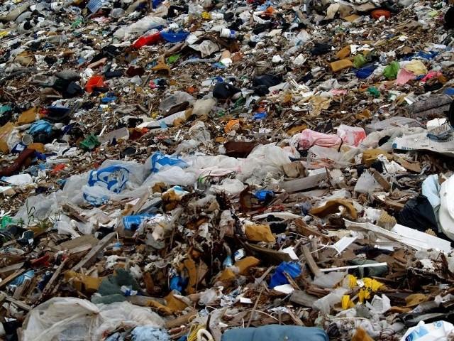 Trzeba rozwiązać umowy na wywóz śmieci