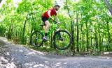 Sulechów stawia na rozwój ścieżek. Gmina współpracuje z rowerzystami i nadleśnictwem