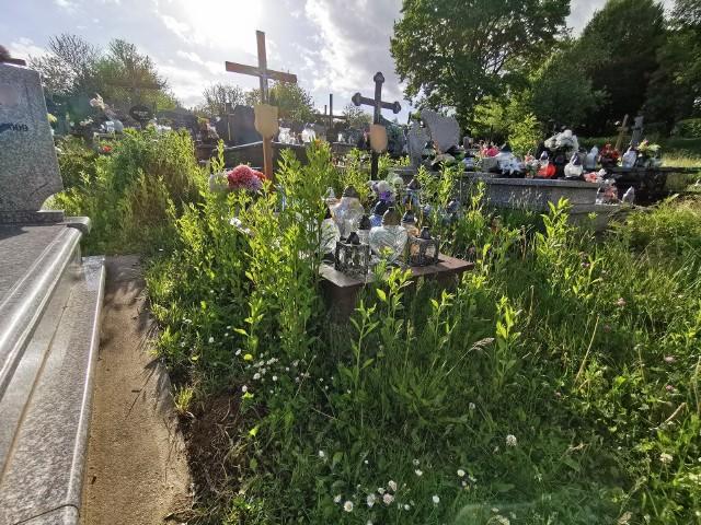 Cmentarz Główny przy ul. Słowackiego to aktualnie nie najlepsza wizytówka Przemyśla. Nekropolia zarośnięta jest trawą. Terenem opiekuje się Zakład Usług Komunalnych w Przemyślu.AktualizacjaKoszenie cmentarza rozpocznie się 26 maja.