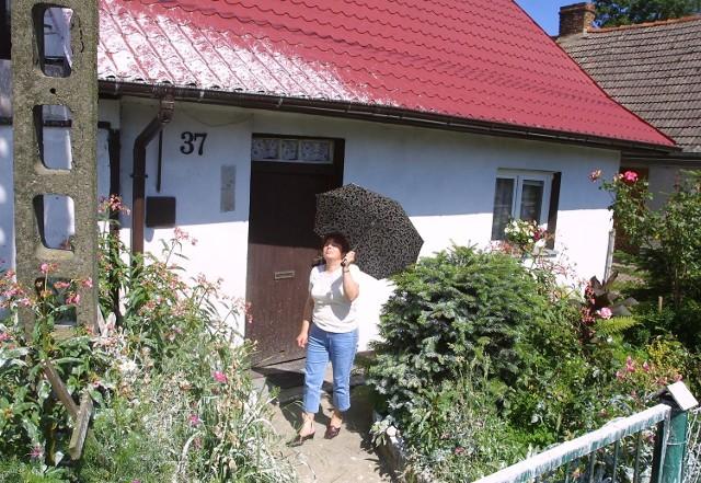Bociany uwiły sobie gniazdo koło domu Haliny Parzych. Kobieta nosi ze sobą parasolkę albo wchodzi do domu od strony podwórka.