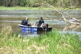 Tragiczny finał akcji ratunkowej na Odrze koło Krosna Odrzańskiego. Z rzeki wyłowiono ciało wędkarza