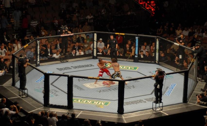 Walki podczas gal UFC prowadzone są w octagonie