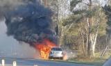 Wypadek na Półwyspie Helskim 24.04.2019. Między Władysławowem i Chałupami mercedes uderzył w drzewo, potem stanął w płomieniach [ZDJĘCIA]